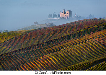 Autumn Vineyards on the hills, at the bottom the Castle of...