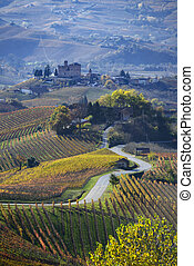 Road between the hills of Langa Piemonte Italy, at the...