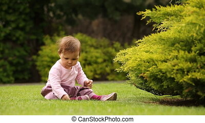 Cute baby girl crawling and playing in the green grass near...