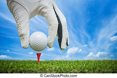 placing ball on tee - golf players hand placing ball on tee...