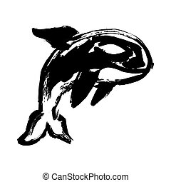 Killer Whale Orca vector