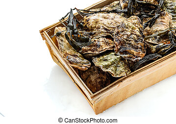 Fresh raw closed oyster in a wooden box isolated on white...