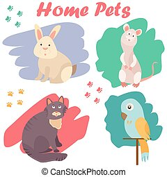 Bright images of domestic animals cat, parrot, rat and rabbit. Can be used for pet shops, clinics, pet food advertising.