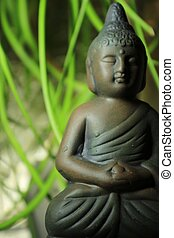 Meditation - Buddha in front of green leafs Zen garden
