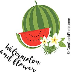 Whole watermelon with slice and leaves. Vector illustration. Fruit set. Icons tropical fruits with leaves and flowers. Set of vector trendy illustrations isolated on white.