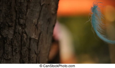 Cyan Blue Feathers Hanging From Tree with Little Girl Running in Background