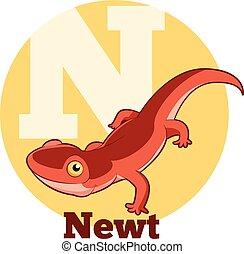 ABC Cartoon Newt - Vector image of the ABC Cartoon Newt