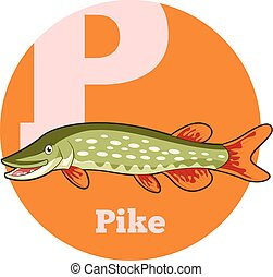 ABC Cartoon Pike - Vector image of the ABC Cartoon Pike