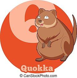 ABC Cartoon Quokka - Vector image of the ABC Cartoon Quokka