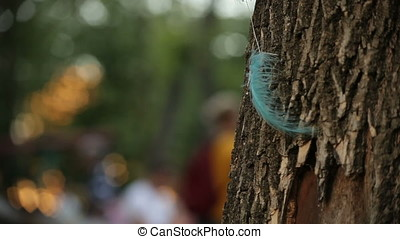 Feathers Symbol of Faith Pan to Playground - Cyan feather...