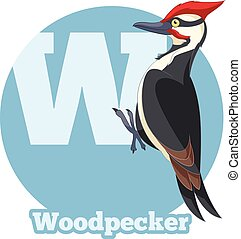 ABC Cartoon Woodpecker - Vector image of the ABC Cartoon...