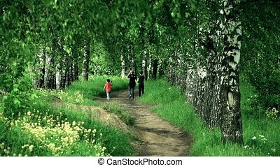Slow motion shot of unknown boys walking in a forest. Summer...