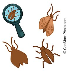 Big moth insects set and small one under magnifying glass -...