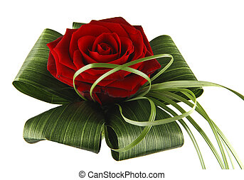 Red rose - Beautiful red rose with decorative leaves...