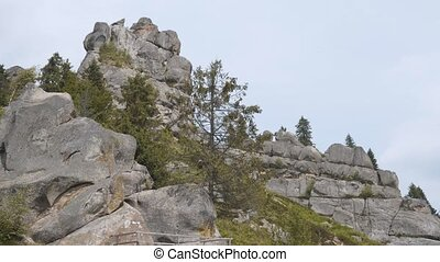Rocky Mountains in Forest - Group of rocky mountains in the...