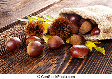 Raw chestnuts in burlap bag. - Autumn edible chestnuts in...