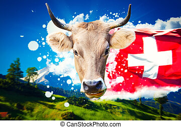 Swiss welcome card