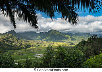 Hanalei valley from Princeville overlook Kauai - Panoramic...