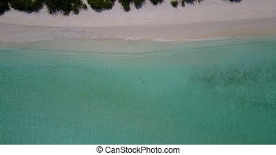 v05557 Aerial flying drone view of Maldives white sandy...