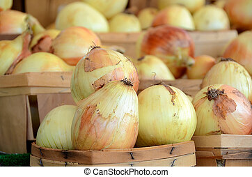 raw onions in wooden boxes