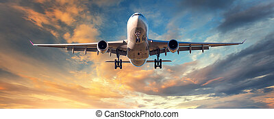 Landscape with white passenger airplane - Landing airplane....