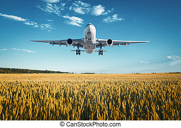 Landscape with big white passenger airplane - Airplane....