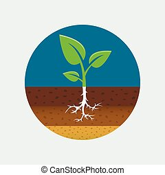 Growing sprout icon