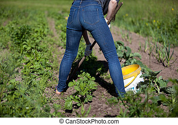 Woman working garden with a hoe. Hobbies and ecological...