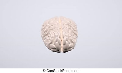 Human brain explosion, 3d animation