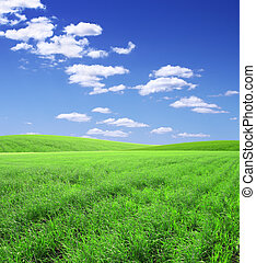 Beautiful landscape - Beautiful summer landscape. A green...