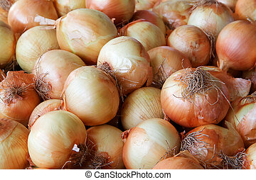Pile of yellow Onions at the farmers market