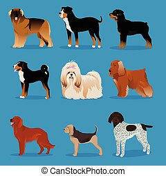 Set of dogs - set of dogs vector illustration