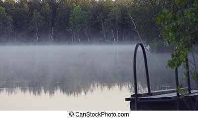 Fog on the forest lake in the morning.