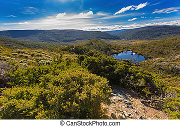 Wombat Pool surrounded by green mountains at Cradle mountain...
