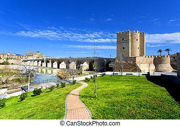 The Roman bridge and the Torre de Calahorra in Cordoba,...