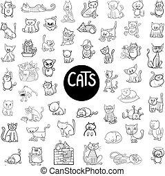 black and white cats big set