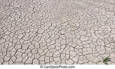 Cracked earth from drought, zoom in