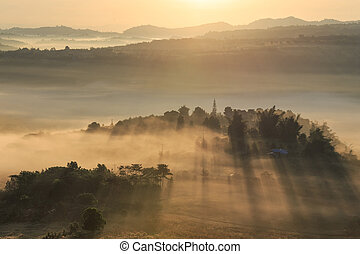 Landscape misty panorama. Fantastic dreamy sunrise on the mountains with view into misty valley below. Foggy clouds above forrest. View below to fairy landscape. Foggy forest hills.