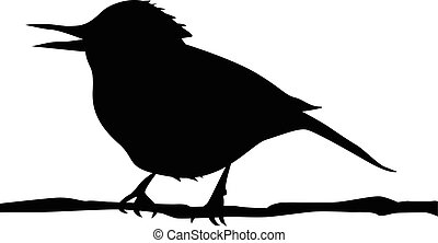silhouette of the bird on branch vector eps 10