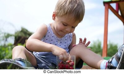 the child sits on the lawn and eats the red berries. garden berries Victoria
