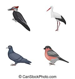 Woodpecker, stork and others. Birds set collection icons in...