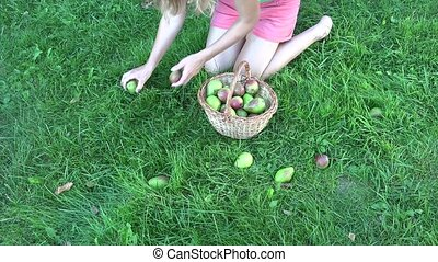 Beautiful blond woman with wicker basket picking pears in garden meadow. 4K