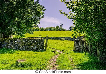 Path and dry stone wall on grazing land. - A path passing...