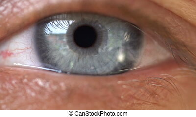 Closeup of woman's blue eye - Blue human eye. Beauty macro...
