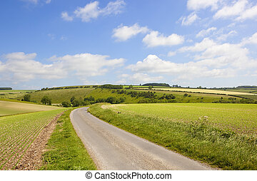 yorkshire wolds country road - a country road beside pea...