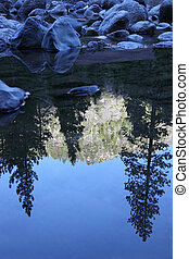 Reflection of Mountainside in Stream