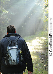 Light Rays in the Forest - Man hiking in a foggy forest with...