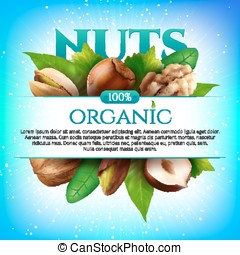 Vector frame of realistic nuts with leaves on colorful background