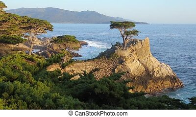 Viewpoint Pebble Beach Monterey California - Lone Cypress...