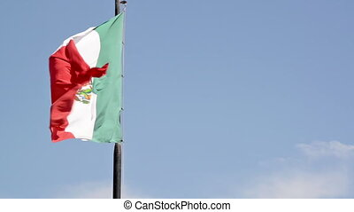 Slow Motion Flag Waving - Slow motion view of a Mexican flag